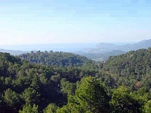 Plot with project in Son Font Calvia